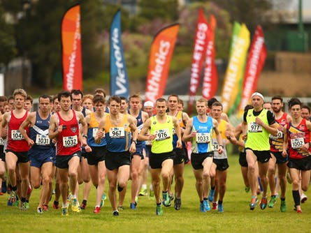 Australian Cross Country Championships