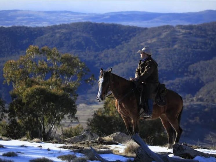 Experience the beautiful Thredbo Valley with Nev