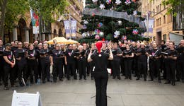 Image of the event 'Choirs in the City - Martin Place Christmas Tree and Pitt Street Mall'