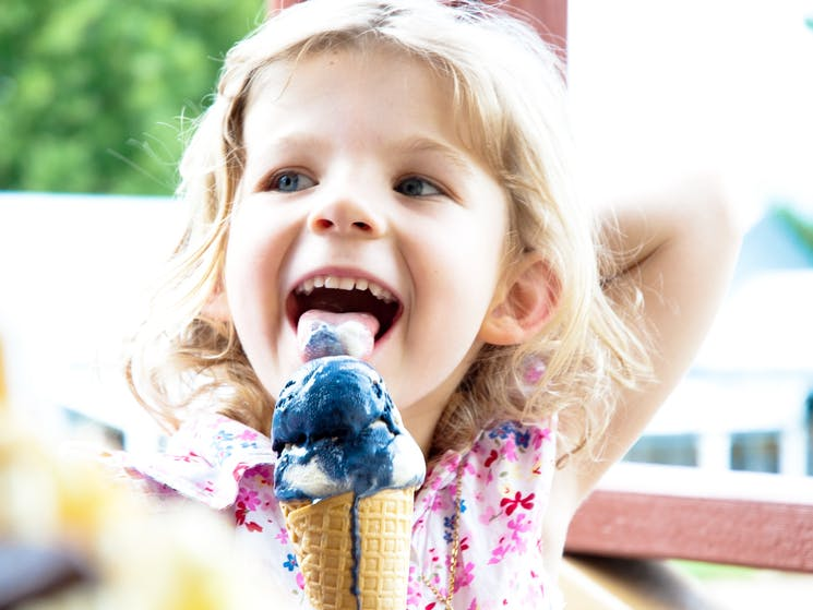 Gourmet Ice Cream, creates many smiles!