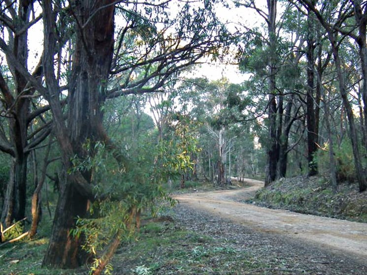 4WD Oberon Colong historic stock route. Photo: D Campbell