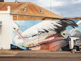 Tumby local in his gopher cruising past Dvate's 2018 Pelicans Mural