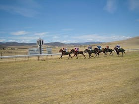 Adaminaby Cup Race Day