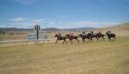 Image of the event 'Adaminaby Cup Race Day'
