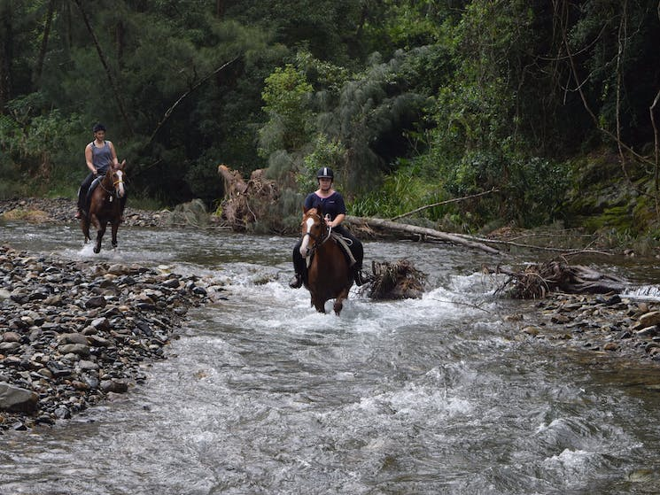 HWH Stables River Ride