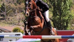 Image of the event 'Mirrabooka Show Jumping Cup'