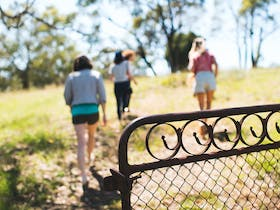group of friends walking though a country gate