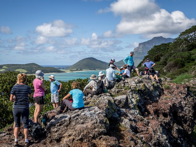 Summer Festival at Pinetrees Lord Howe Island