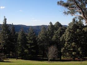 Mount Tomah image