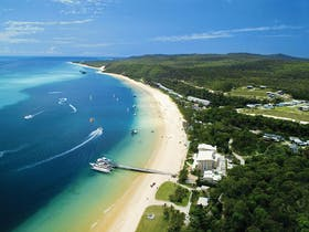 Tangalooma Island Resort Day Cruises