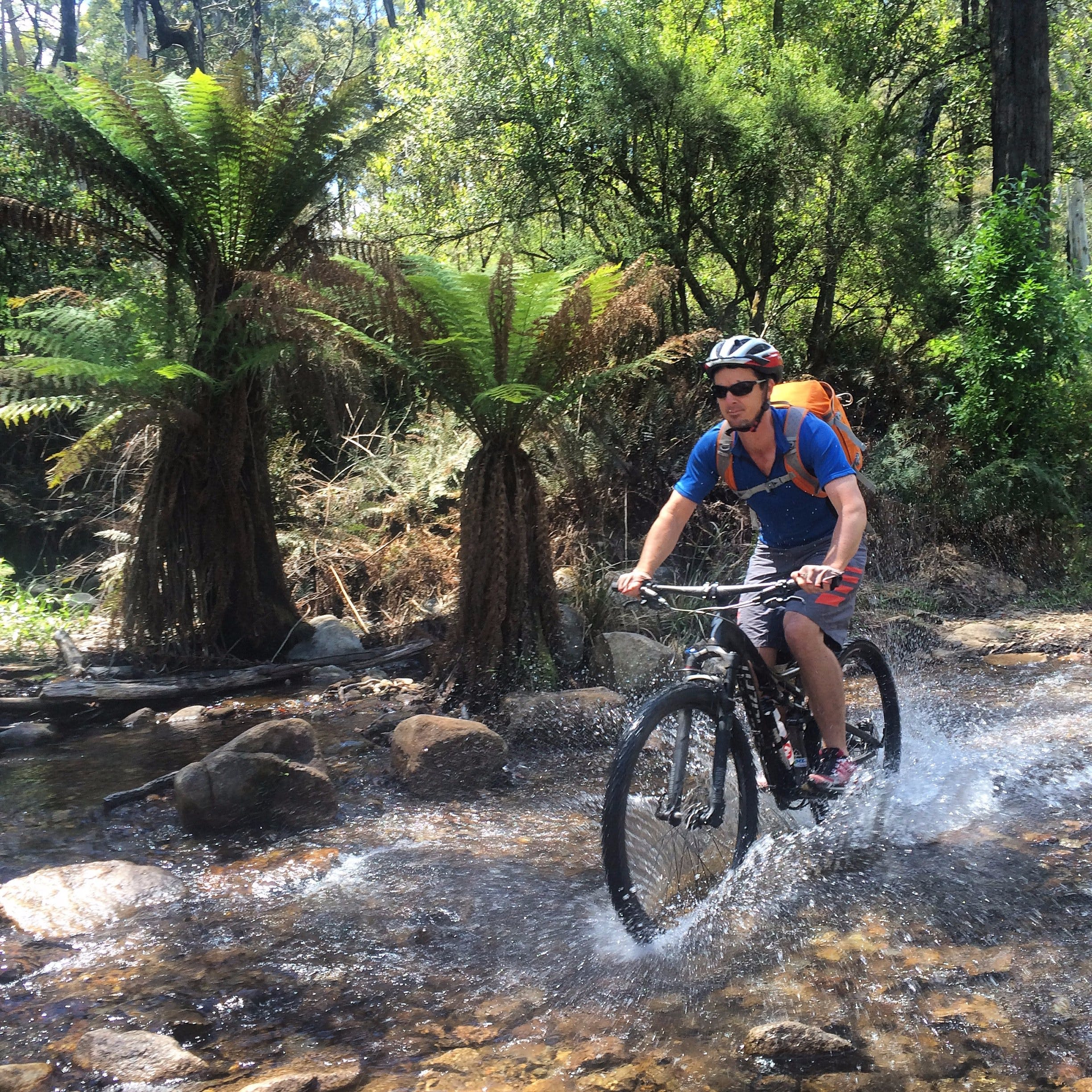 All Terrain Cycle Tours Mansfield Mt Buller