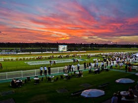 Canterbury Park Night Races