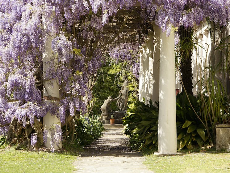 Wisteria walkway with Satyr pursuing a Nymph in the distance