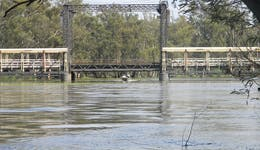 Image of the event 'Koondrook Barham Fishing Competition'