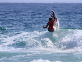 Rip Curl Grom Search