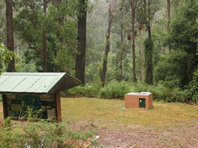 Goodenia Rainforest picnic area