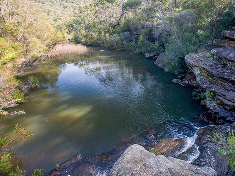 Kingfisher Pool picnic area, Heahtcote National Park. Photo: Nick Cubbin