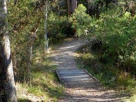 McDirtys walking track