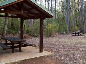 Mongarlowe River picnic area