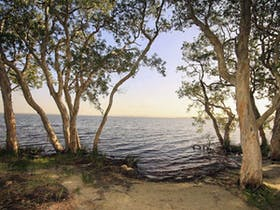 Northern Broadwater picnic area