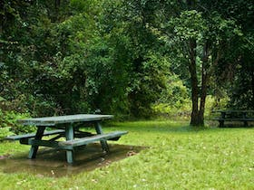 Williams River picnic area