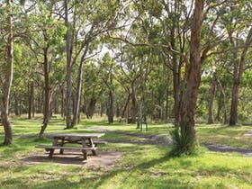 Wollomombi Gorge and Falls picnic area