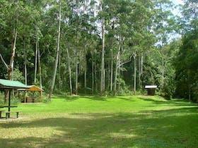 Woolgoolga Creek picnic area
